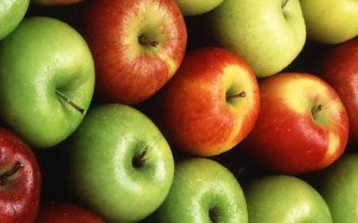 Perchè si dice una mela al giorno leva il medico di torno?
