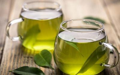 Il tè verde potenziale alleato per la salute del cuore