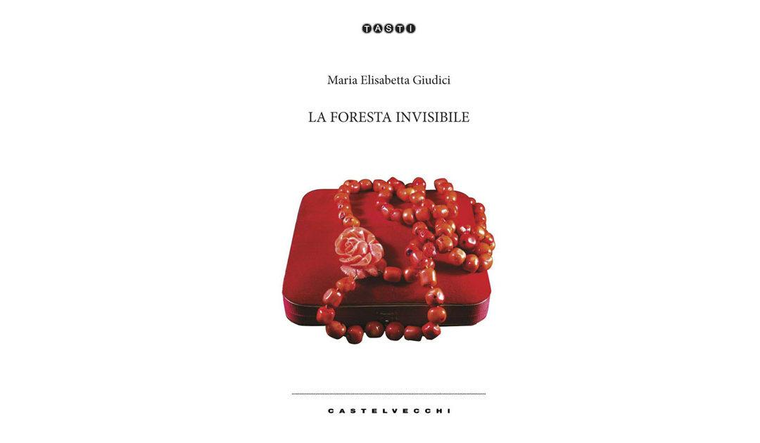 """""""La foresta invisibile"""" il nuovo romanzo di Maria Elisabetta Giudici"""